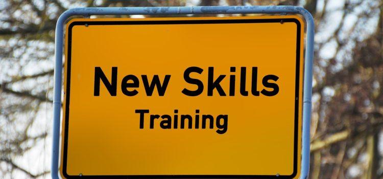 Individual Development Plan – Skills Training and development